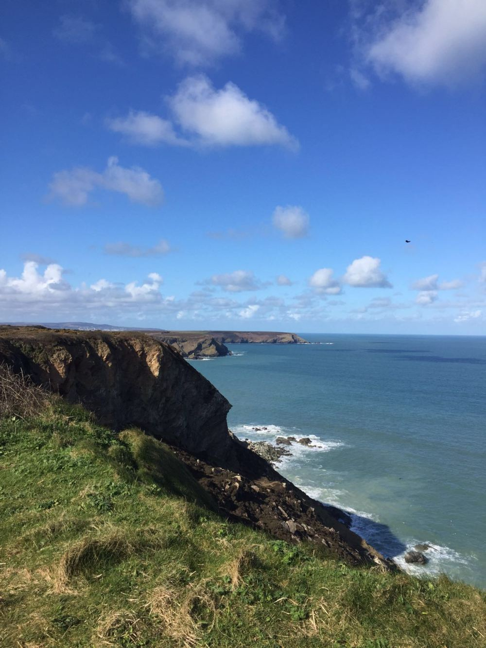 cornish cliff 7.jpg